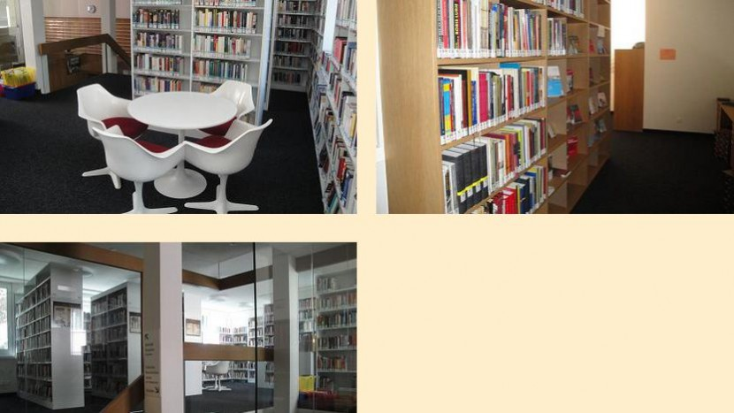 Screenshot der Bibliotheks-Website.