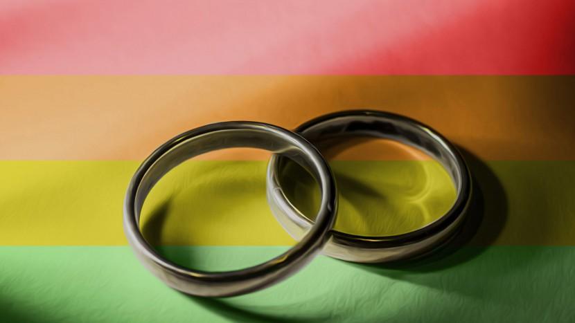 Ist eine Ehe nur für Mann und Frau? Die CVP-Familieninitiative will es so.