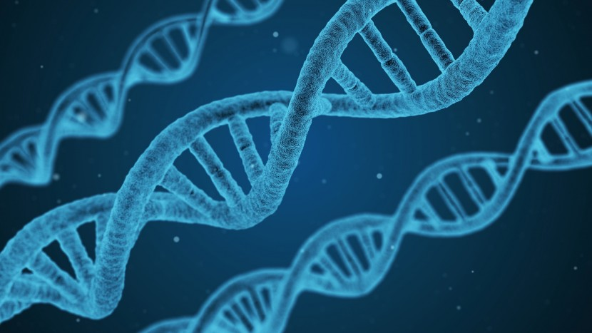 Gott hat in der Naturwissenschaft keinen Platz – dennoch sind viele Forscher gläubig.